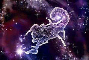 Дева и Скорпион: совместимость знаков зодиака в любовных отношениях, семейной жизни, дружбе, работе