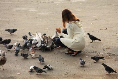 К чему снится хлеб женщинам и мужчинам (белый, черный, свежий) – сонник, толкования