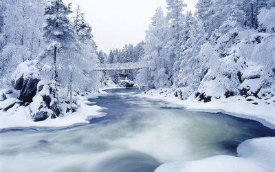 К чему снится река (мутная, чистая вода с течением) женщинам и мужчинам – сонник