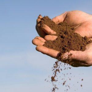 Пахать землю во сне. Толкование снов. Сонник: трактор пашет землю, самому идти за плугом, копать землю