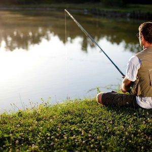 Ловить рыбу во сне мужчине на удочку