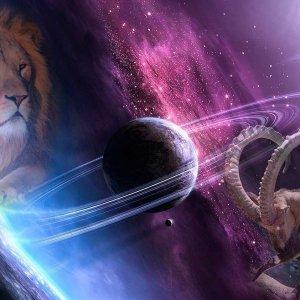 Лев и Козерог: совместимость знаков зодиака в любовных отношениях, семейной жизни, дружбе 💗 Астрология совместимость знаков между собой