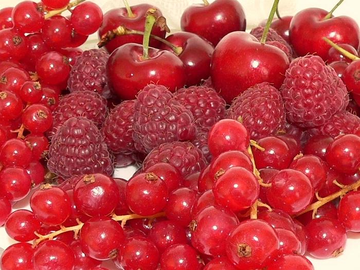 К чему снится собирать и есть ягоды?
