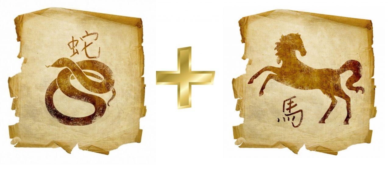 Совместимость Лошади и Змеи в отношениях и браке